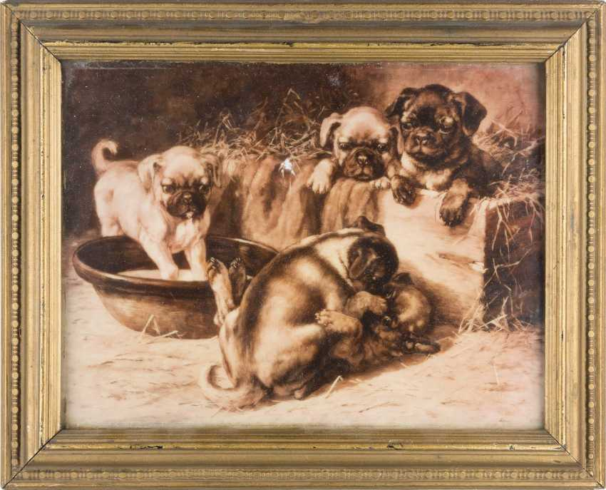 PORCELAIN PICTURE PLATE 'PLAYFUL PUPPIES' - photo 2