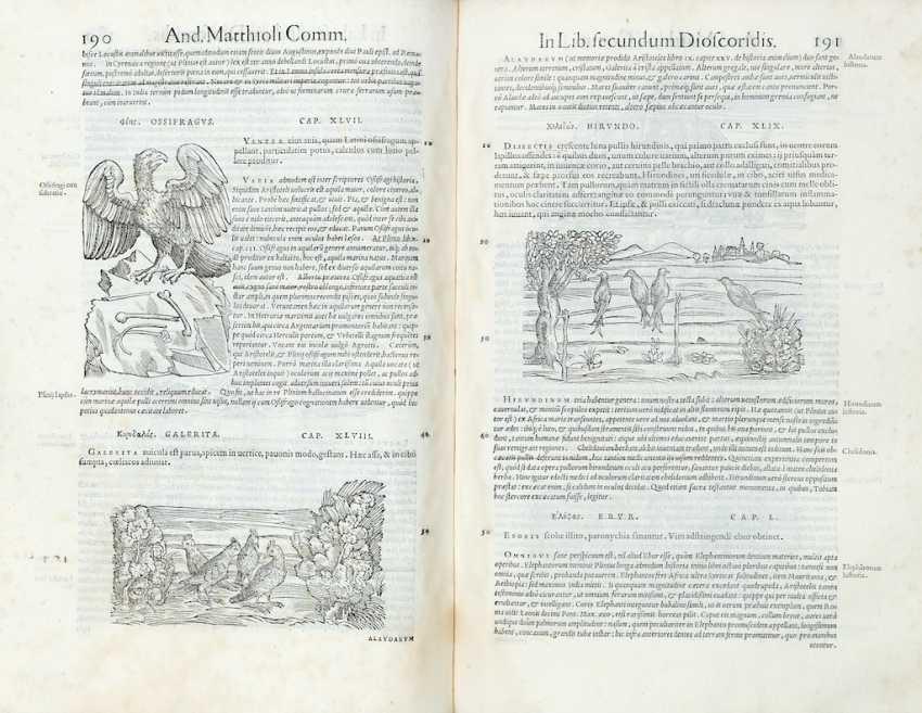 MATTIOLI, Pietro Andrea (1501-1577) - Commentarii in libros sex Pedacii Dioscoridis Anazarbei de medica materia. Venice: in officina Erasmiana, presso Vincenzo Valgrisi, 1554.  - photo 1