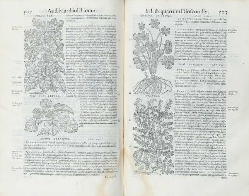 MATTIOLI, Pietro Andrea (1501-1577) - Commentarii in libros sex Pedacii Dioscoridis Anazarbei de medica materia. Venice: in officina Erasmiana, presso Vincenzo Valgrisi, 1554.  - photo 2
