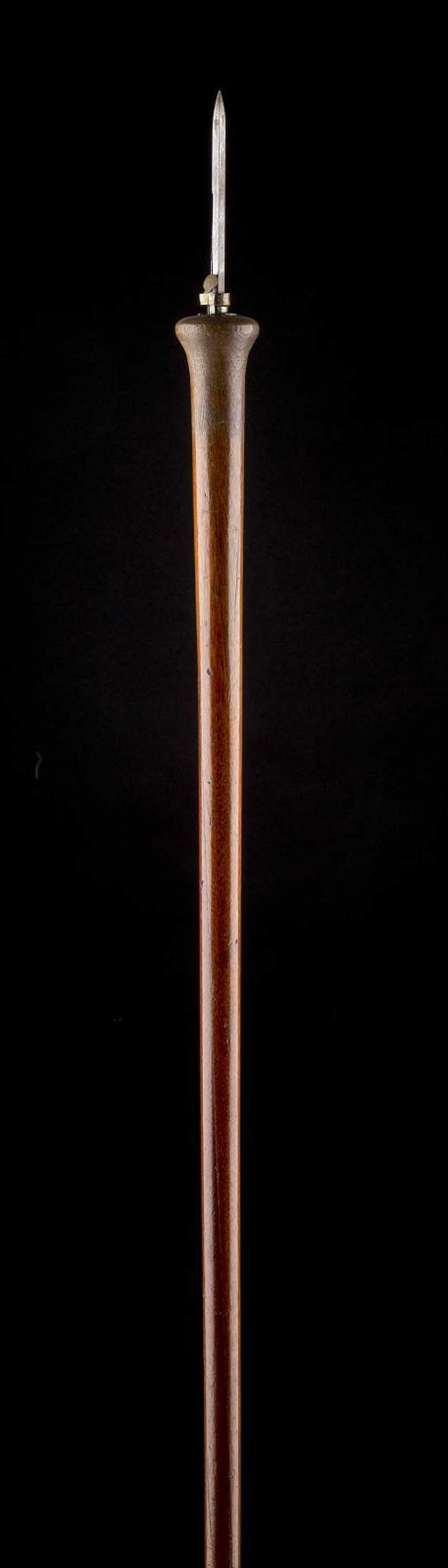 WALKING STICK WITH METAL SPIKE - photo 1