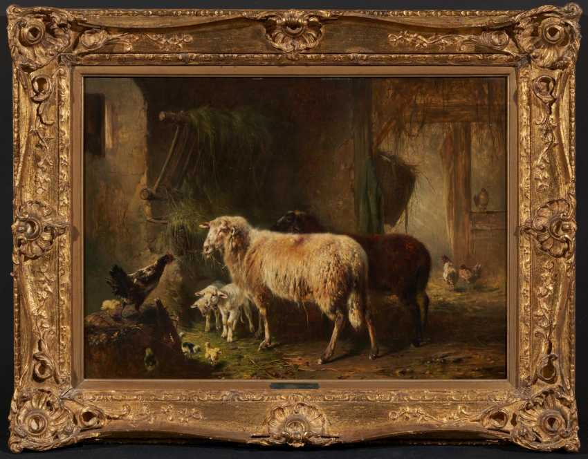 In the sheepfold - photo 2