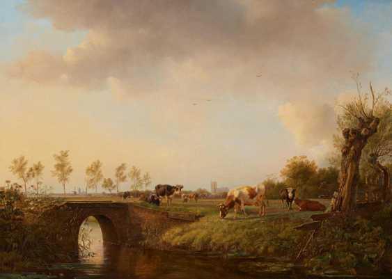 Dutch pasture landscape - photo 1