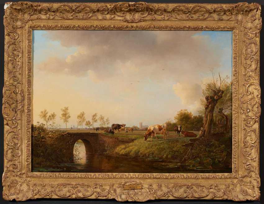 Dutch pasture landscape - photo 2