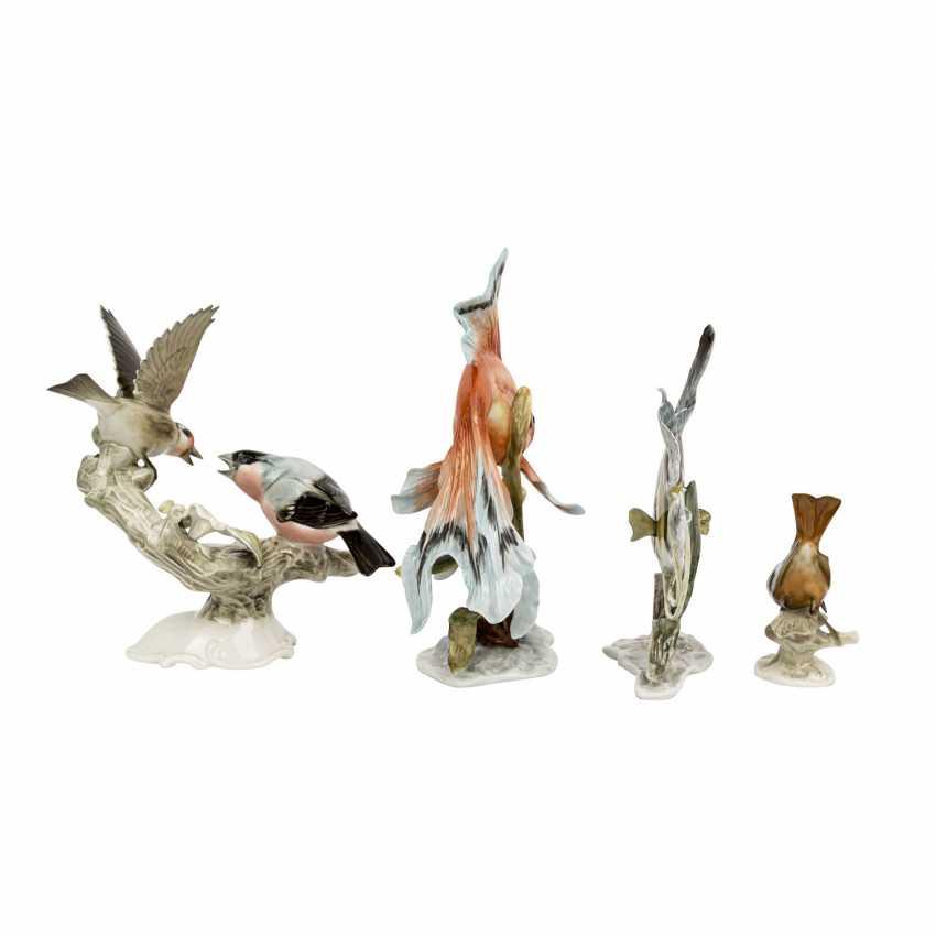 ROSENTHAL / HUTSCHENREUTHER 4 animal figures, 20th century: - photo 3