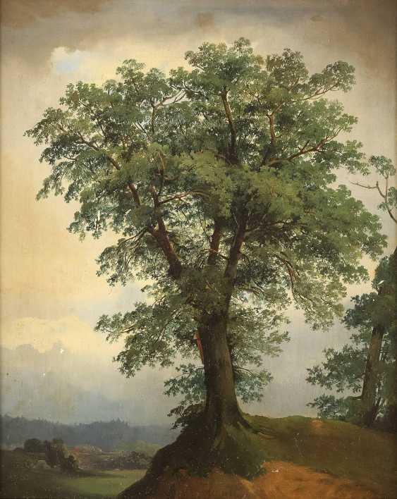 JOHAN CHRISTIAN CLAUSEN DAHL (UMKREIS) 1788 Bergen - 1857 Dresden Baumstudie - Foto 1