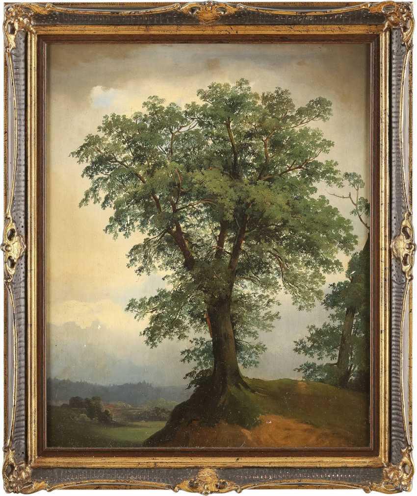 JOHAN CHRISTIAN CLAUSEN DAHL (UMKREIS) 1788 Bergen - 1857 Dresden Baumstudie - Foto 2