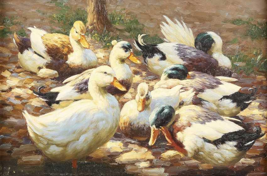 GUSTAV MESMER 1865 Althausen - 1940 Sieben Enten am Ufer - photo 1