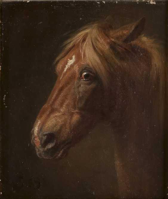 WILHELM CAMPHAUSEN Düsseldorf 1818 - 1885 Detailstudie eines Pferdekopfes - photo 1