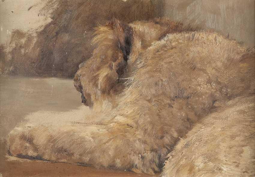 DEUTSCHER TIERMALER Tätig 1. H. 20. Jahrhundert Studie eines Löwenjungen - photo 1