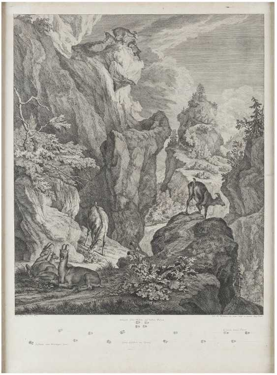 JOHANN ELIAS RIDINGER 1698 Ulm - 1767 Augsburg - photo 1