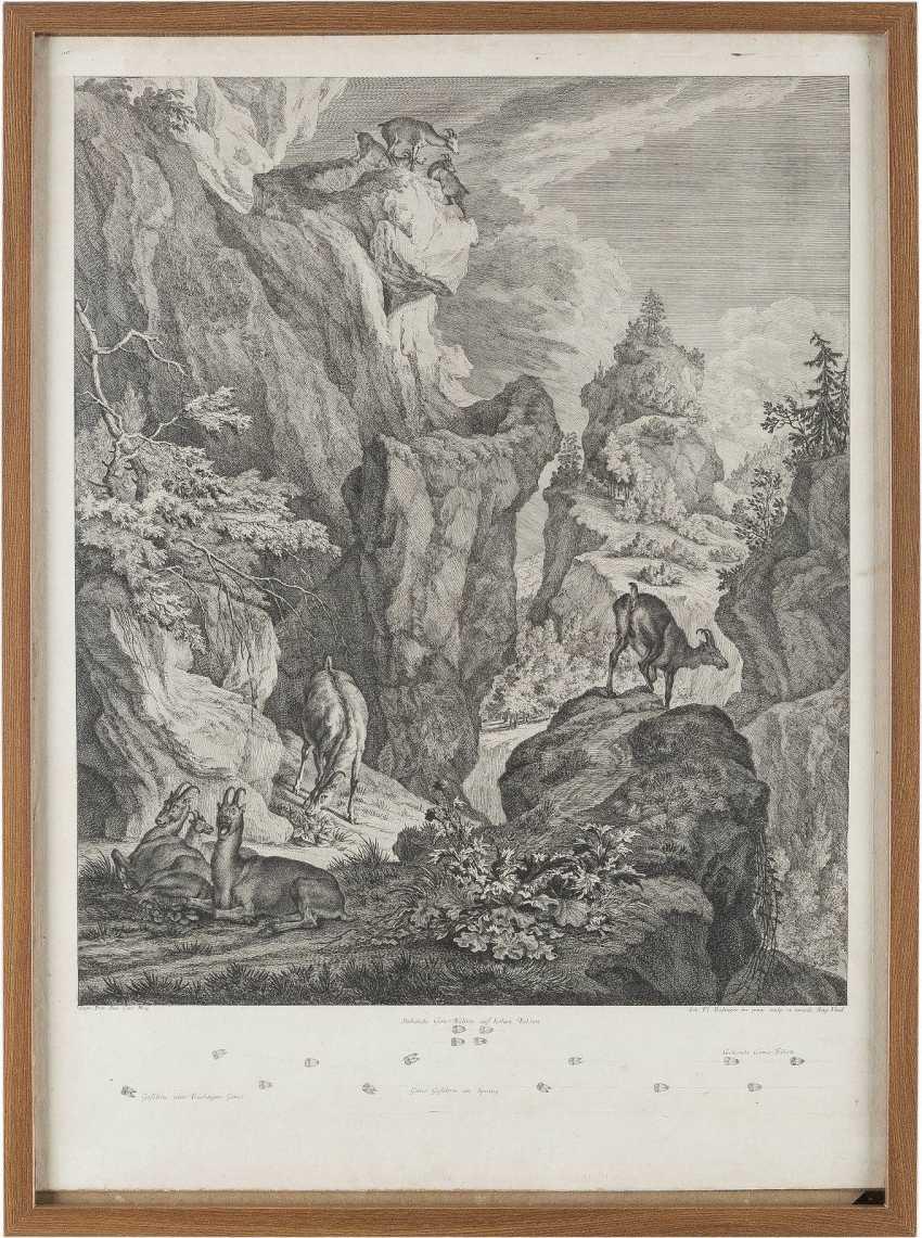 JOHANN ELIAS RIDINGER 1698 Ulm - 1767 Augsburg - photo 2