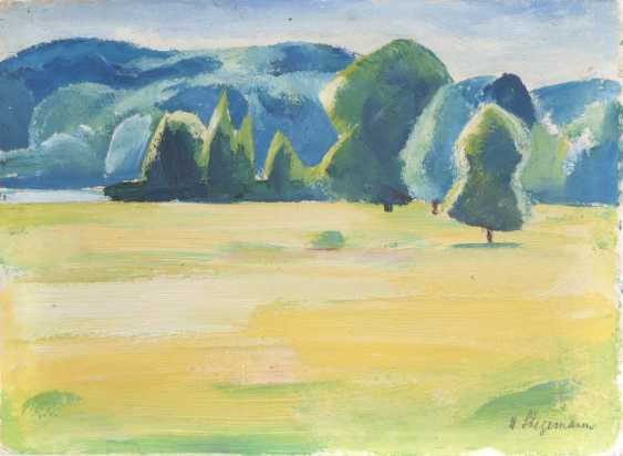 Landscape with meadow - photo 1