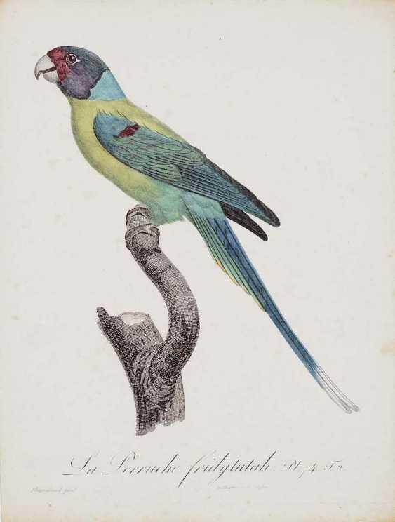 BARRABAND, JACQUES 1768 Aubusson - 1809 Lyon - photo 1