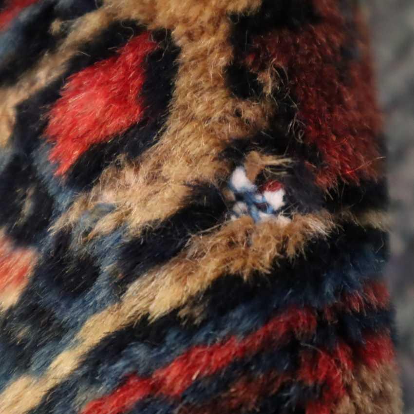 Amerikanischer Sarugh - photo 2