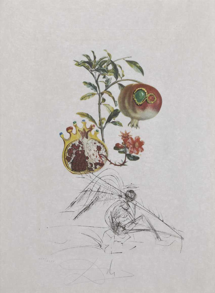 Salvador Dalí, Pomegranate and the Angel (Pomegranate). 1969 - photo 1