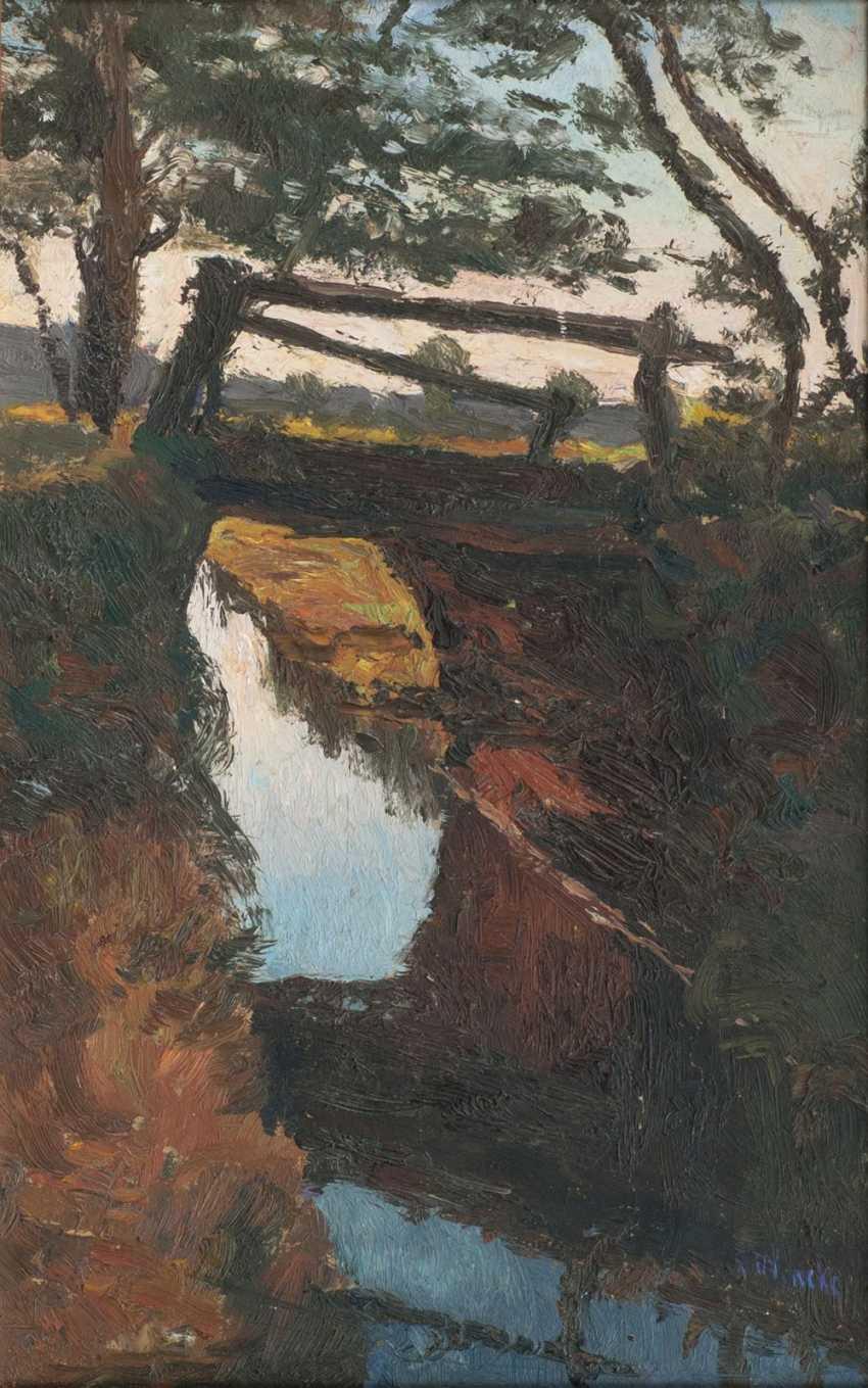 Moor trench with bridge - photo 1