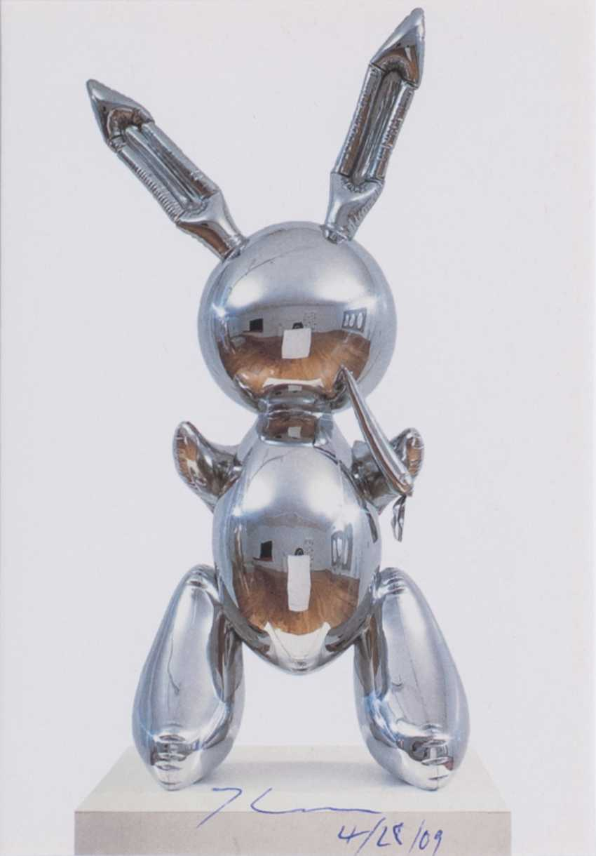 Rabbit - photo 1