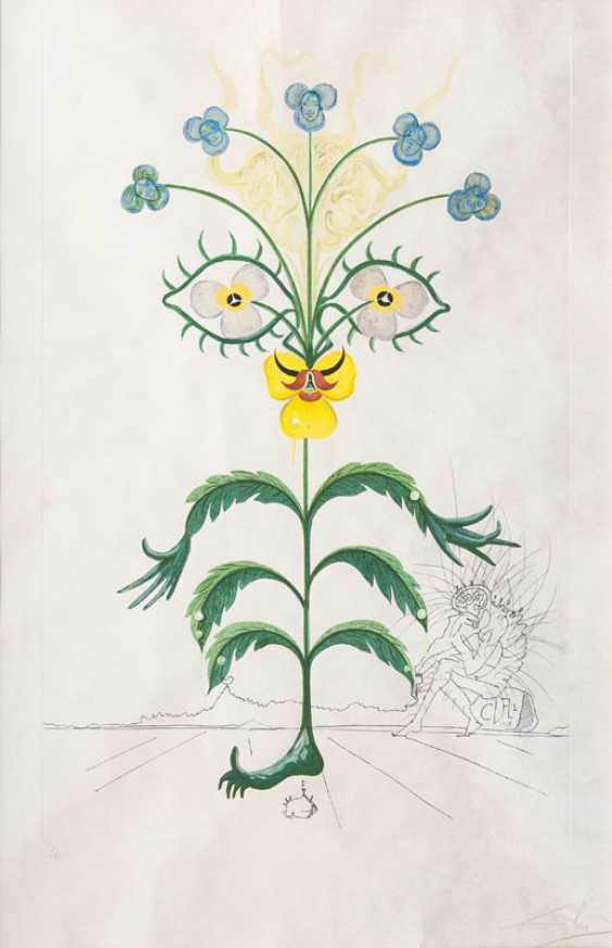 Flordali - Pensée. Salvador Dalí - photo 1