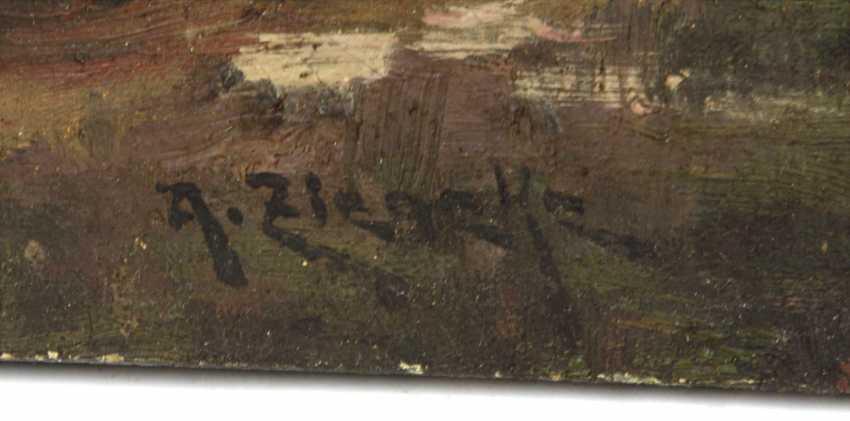 Landscape - Ziegeka, A. - photo 2