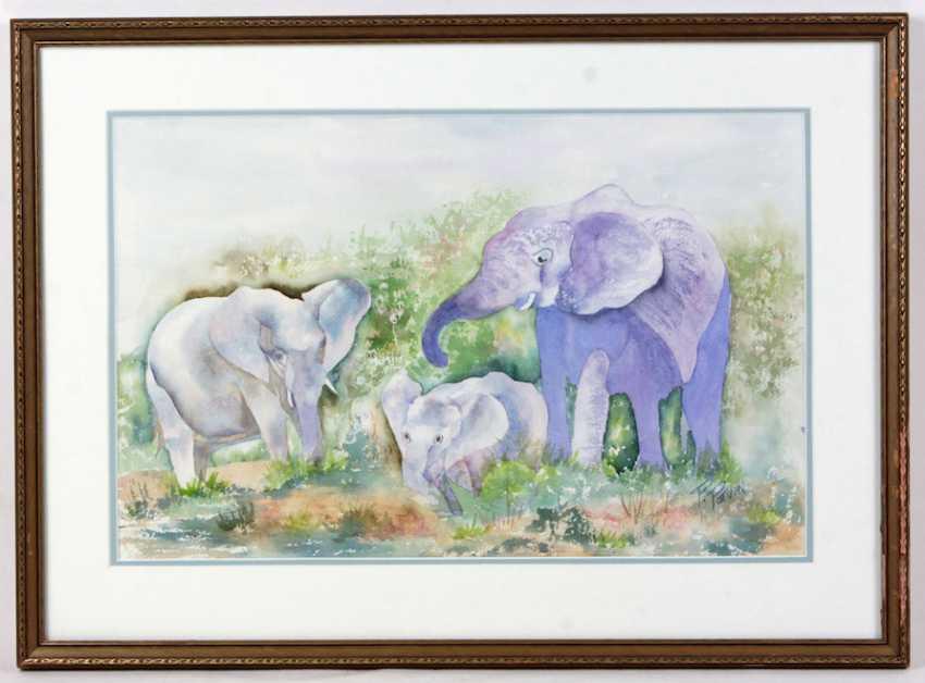 Elephant Family - Potvin, P. - photo 1