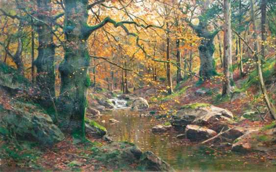 Stream in the autumn forest. Walter Moras - photo 1
