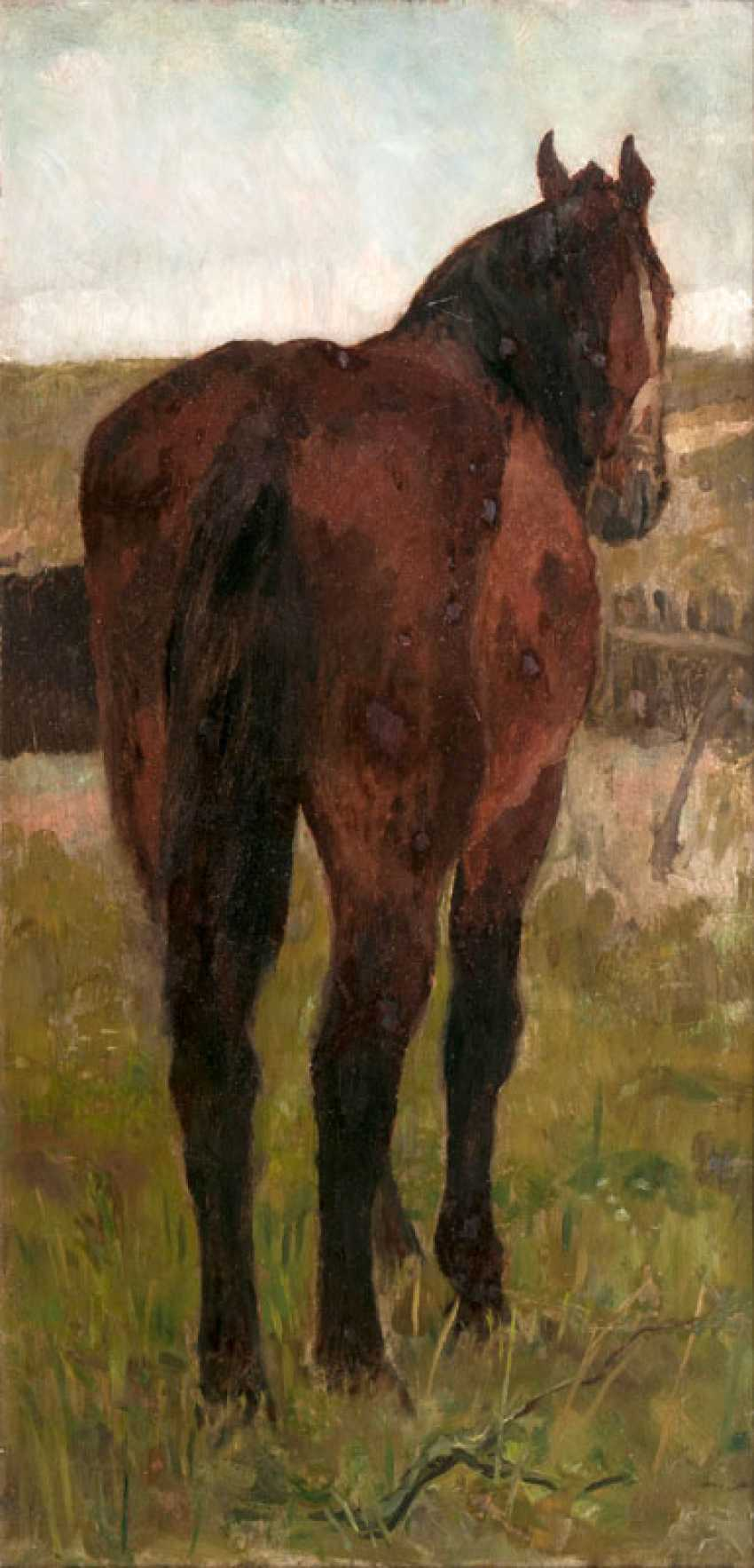 Standing Horse. Thomas Herbst - photo 1
