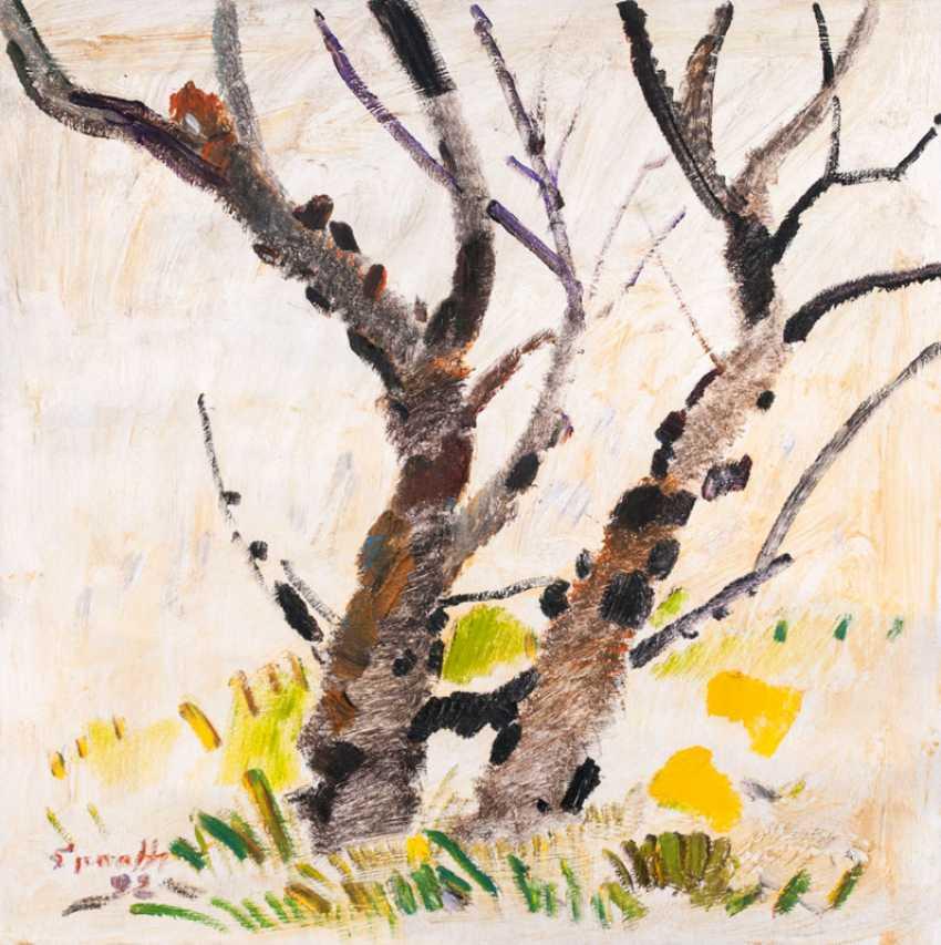 Two Birch Trees. Siegward Sprotte - photo 1