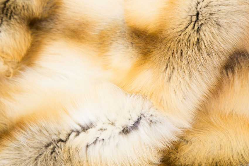 Fur blanket - photo 2