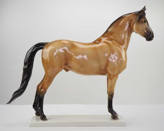 Allach Standing Horse. - photo 2