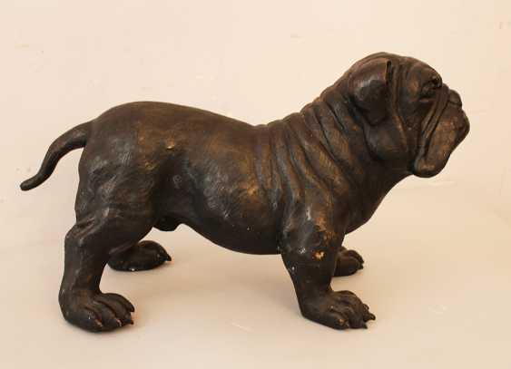 Bronze Bulldog - photo 2