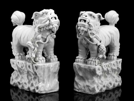 Pair of 'Blanc de Chine'-lions on pedestals with rock structure - photo 1
