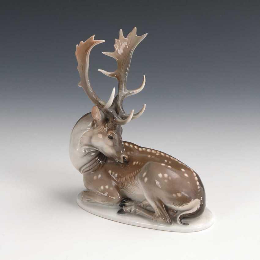 Of Fallow Deer, Rosenthal Spent. - photo 1
