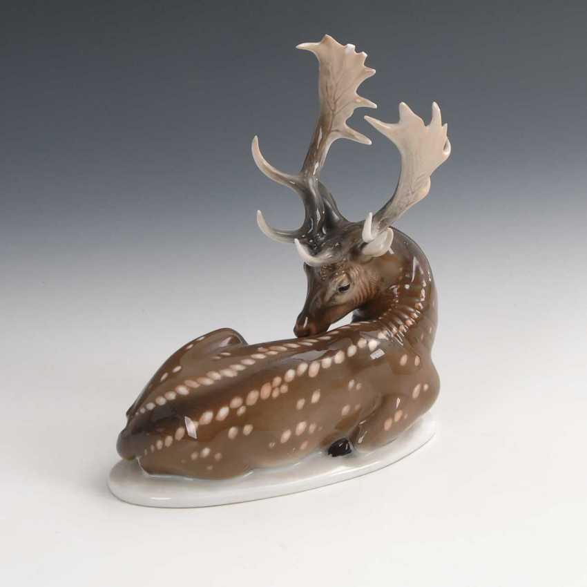 Of Fallow Deer, Rosenthal Spent. - photo 2