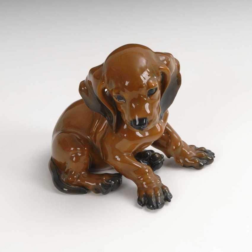 Dachshund Puppy, Rosenthal. - photo 1
