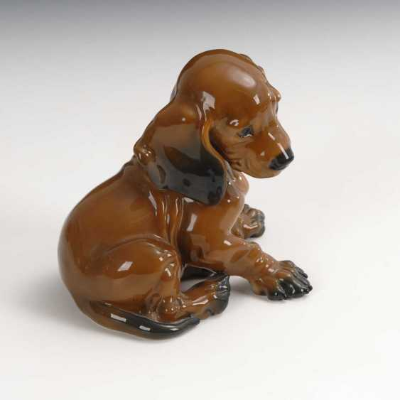 Dachshund Puppy, Rosenthal. - photo 2