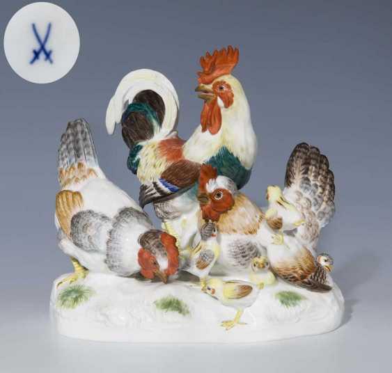 Chicken group. - photo 1