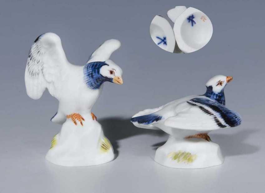 2 Miniature Pigeons. - photo 1