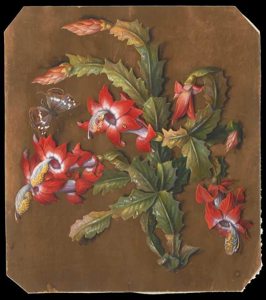 Flower painter around 1840: Flowering cactus. - photo 1