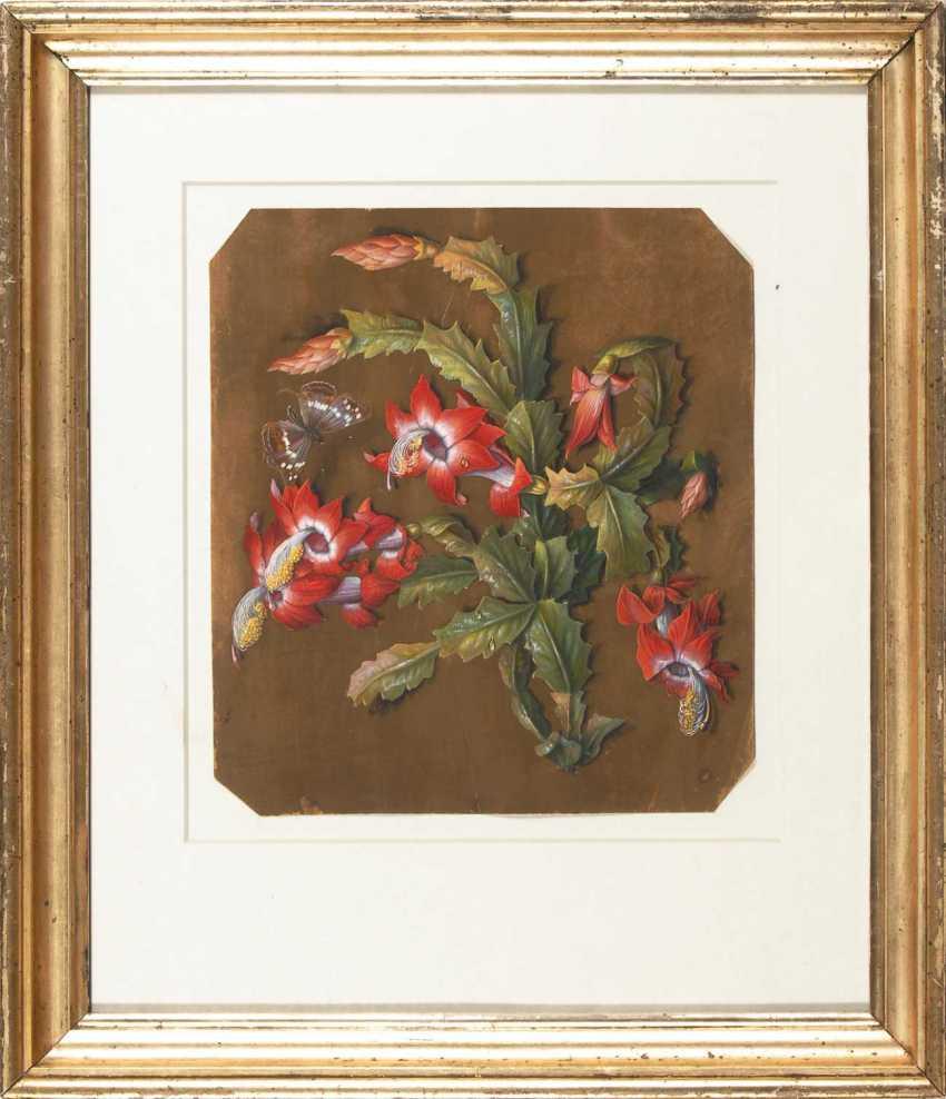 Flower painter around 1840: Flowering cactus. - photo 2