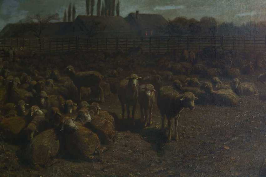 Brendel, Albert Heinrich: sheep in the Mon - photo 4