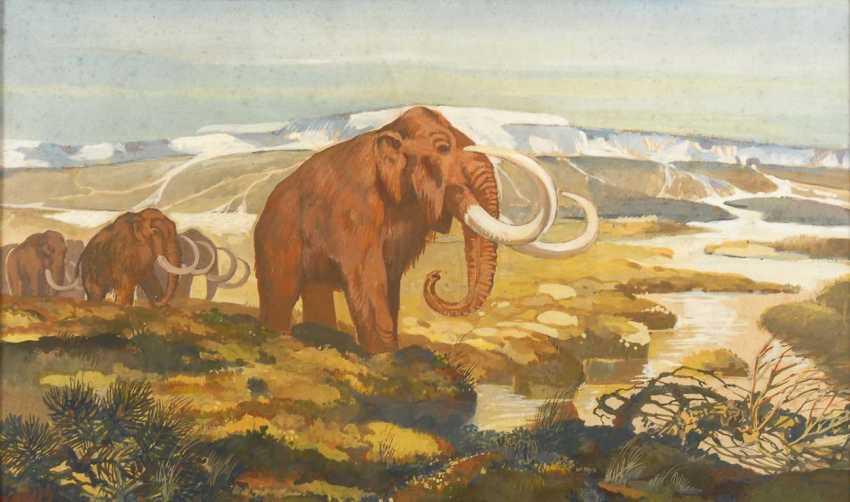 Kuhnert, Wilhelm attributed to: Mammuth - photo 1
