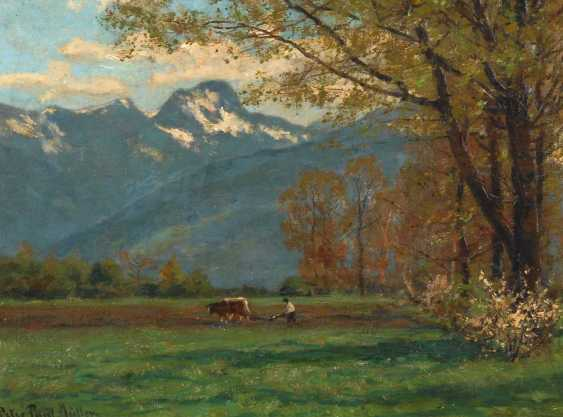 Müller, Peter Paul: the spring in the Voralpe - photo 1