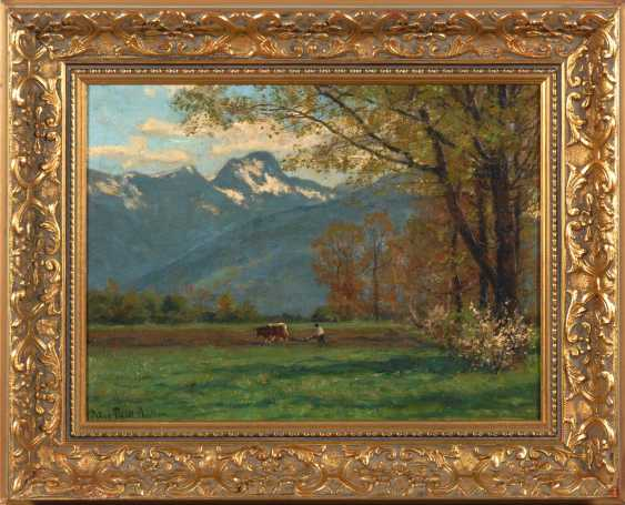 Müller, Peter Paul: the spring in the Voralpe - photo 2