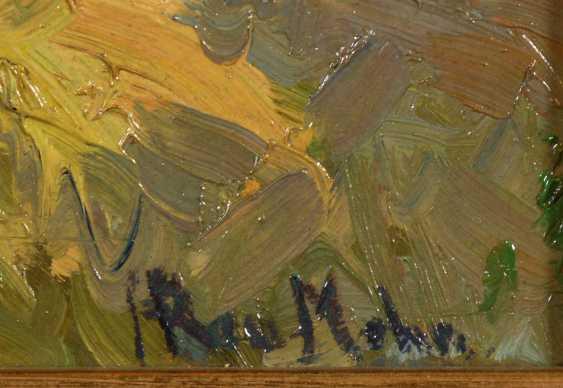 Rau-Mohn, Hedwig: Sunny Field Landscape - photo 3
