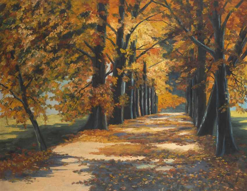 Sunny Tree-Lined Avenue. - photo 1