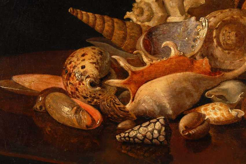 Still life with shells. - photo 2