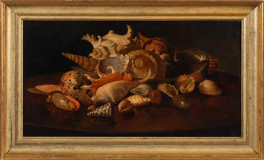 Still life with shells. - photo 3
