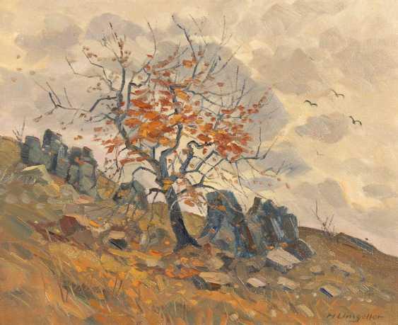 Umgelter, Hermann Ludwig: Rocky Slope - photo 1