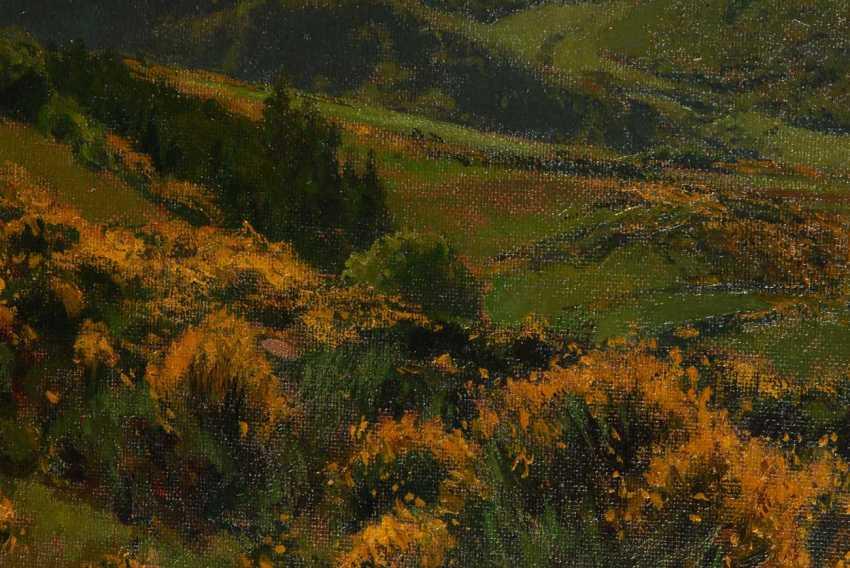 """Wille, Fritz von: """"gorse flowering in the - photo 2"""