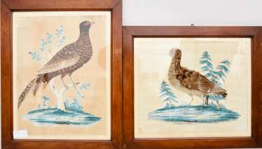 TWO PHEASANTS,mixing technology with real feathers, framed behind glass, 20. Century